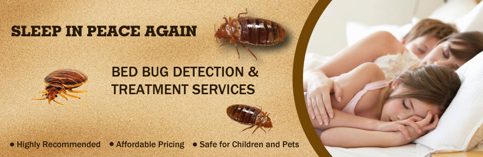 index bed for service pest exterminator bug control bugs cheap dsc